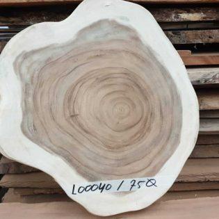 suar boomstamblad rond 75