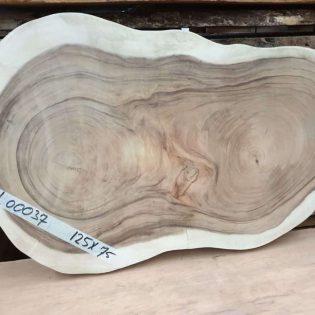Suar boomstamblad rond 125x75