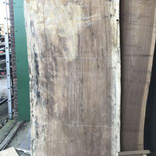 Afzelia boomstambladen