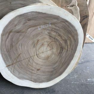Suar boomstamblad rond LR01
