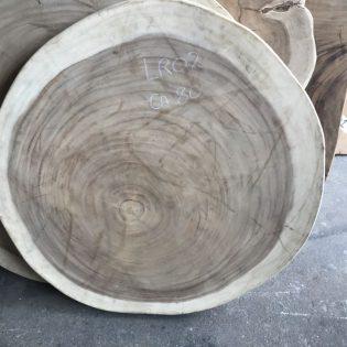 Suar boomstamblad rond LR02