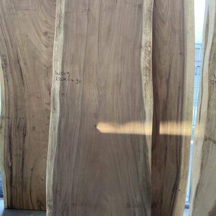 Suar houten boomstam 220x90x7 W019