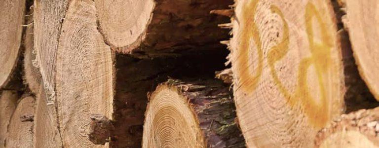 textuur-wood